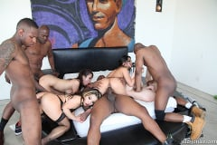 Brooklyn Lee - Black On White Interracial Orgy Party (Thumb 50)