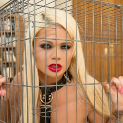 Alexis Ford in 'Jules Jordan' First DP Creampied In Both Holes (Thumbnail 28)